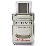 Salvatore Ferragamo Туалетная вода Attimo Pour Homme 100 ml (м)